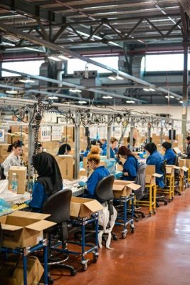 Developing a Fully Functioning Manufacturing Plant