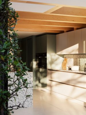 House for a Gardener Haringey North London extension