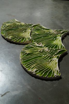 Microalgae for wastewater treatment in the United Kingdom
