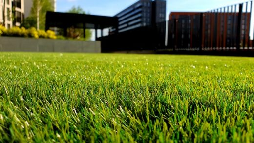 Tools You Need to Maintaining a Beautiful Lawn