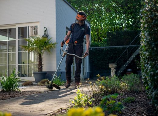 Five effective ways to advertise your gardening firm