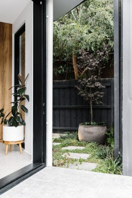 N+T House Fitzroy North Melbourne